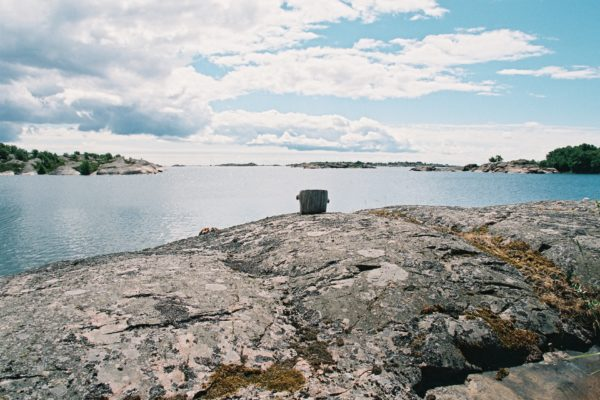 Speeding up the ecological recovery of the Baltic Sea